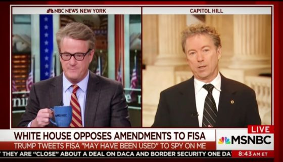 'Morning Joe' | Rand Paul on the Need for FISA Reform